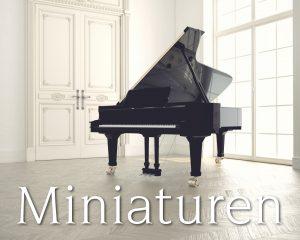 Hendrik Jan van der Heiden brengt nieuw album Miniaturen uit